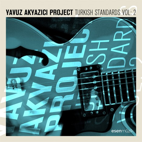 Turkish Standards Vol. 2